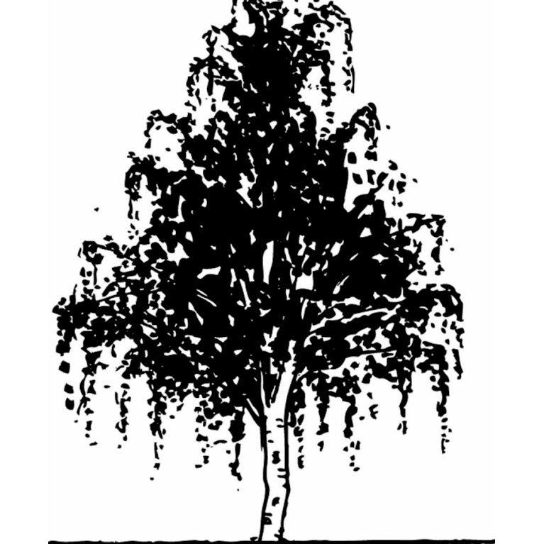 Vortebirk