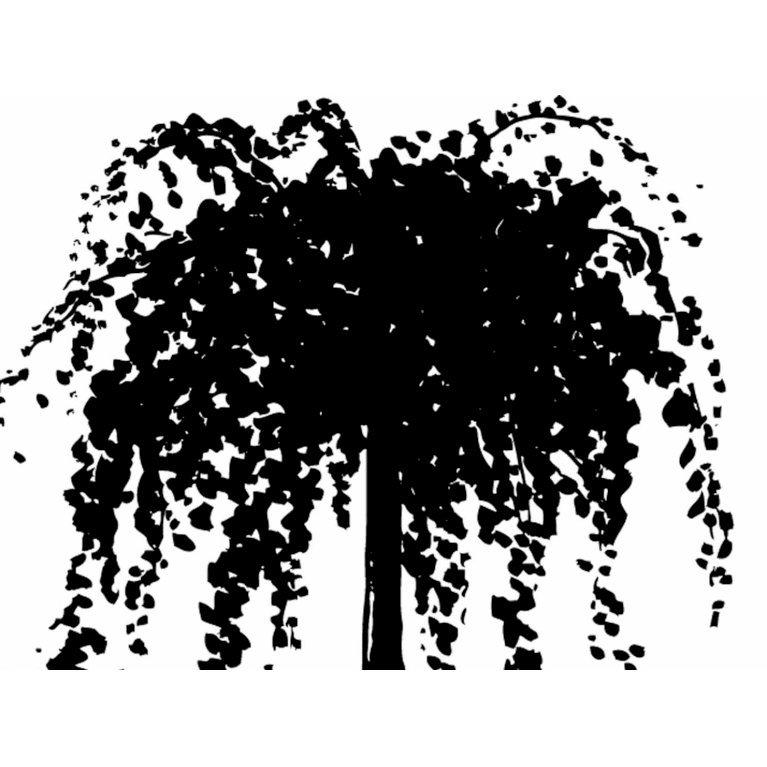 Hængende Hjertetræ
