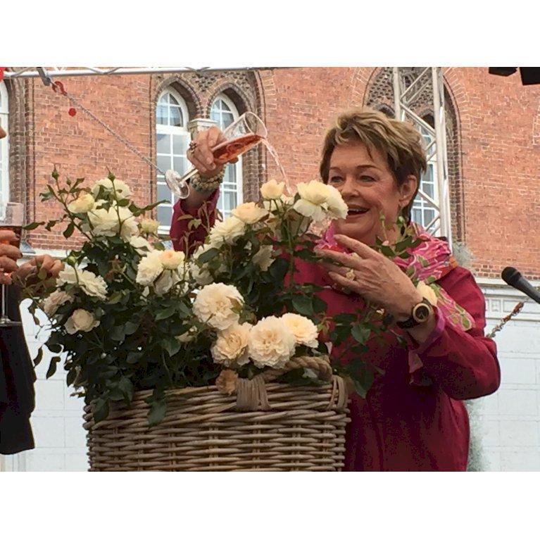 Fru Nørby™ Plant'n'relax®