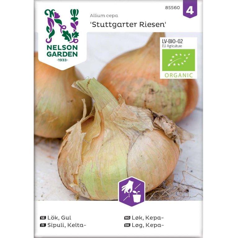 Løg, Kepa-, Stuttgarter Riesen, Organic