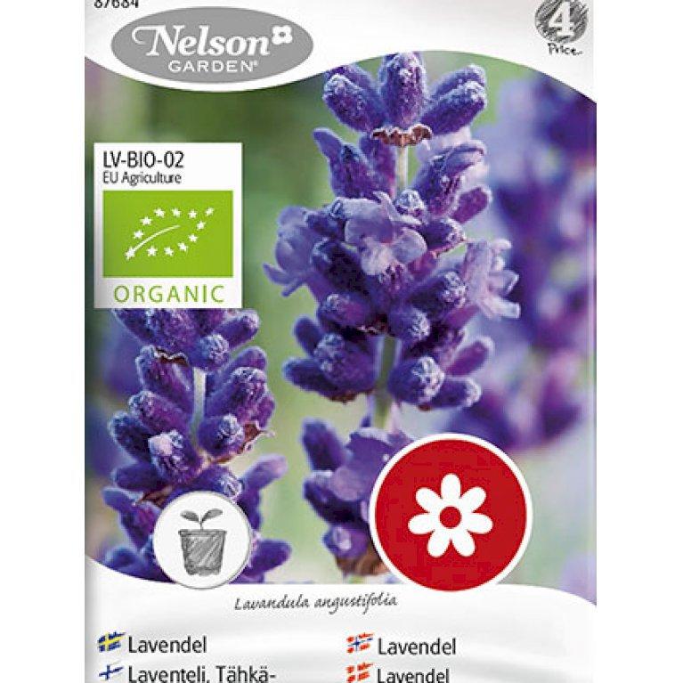 Lavendel, Ægte, Organic