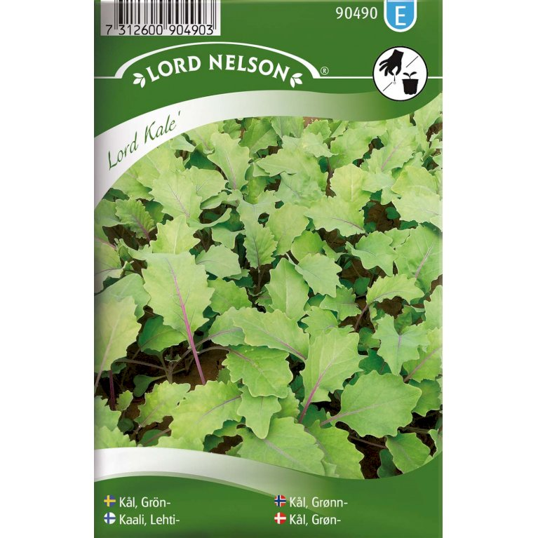 Kål, Baby Leaf-, Lord Kale