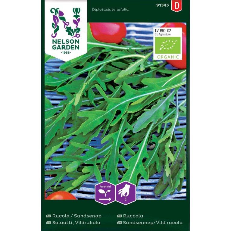 Sandsennep/Vild rucola, Organic