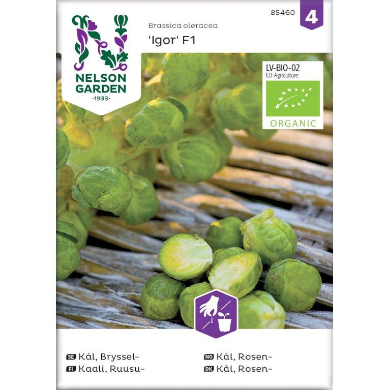 Kål, Rosen-, Igor F1, Organic