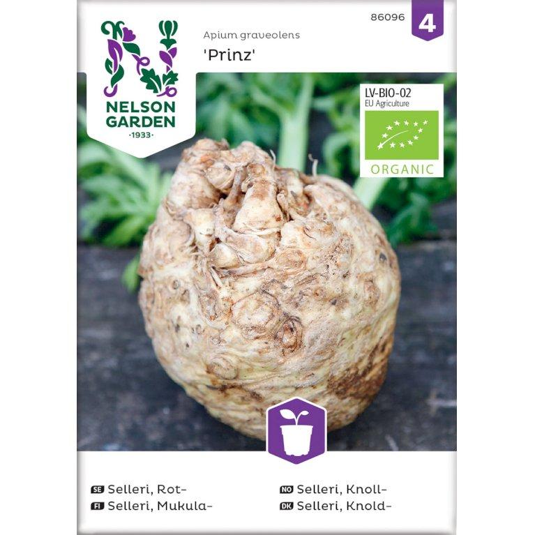 Selleri, Knold-, Prinz, Organic
