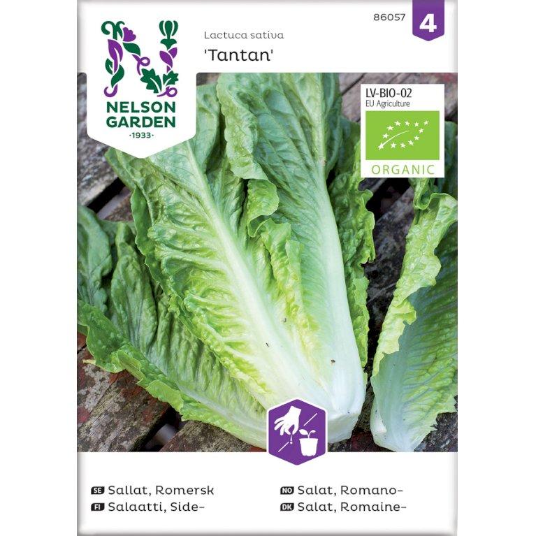 Salat, Romaine-, Tantan, Organic