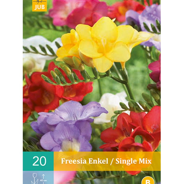 Fresia Enkel / Single Mix