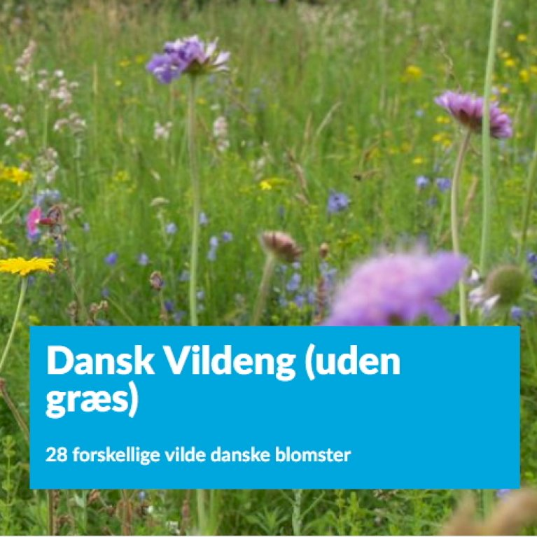 Dansk Vildeng (uden græs)