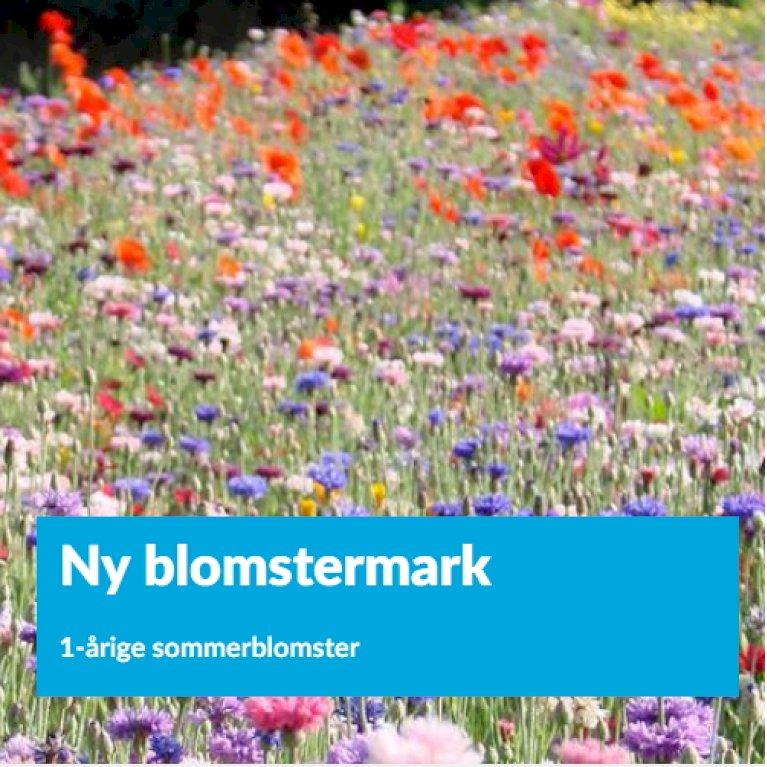 Ny blomstermark