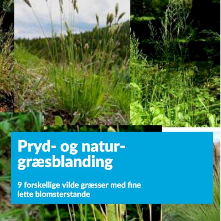 Pryd- og natur-græsblanding