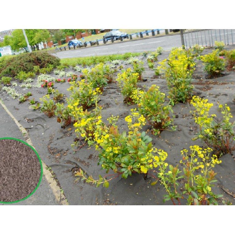 Biocovers®  Plantebaseret ukrudtsdug - 100% nedbrydelig