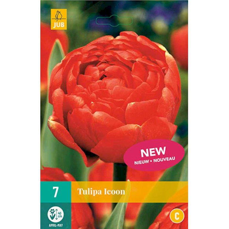 Tulips Icoon