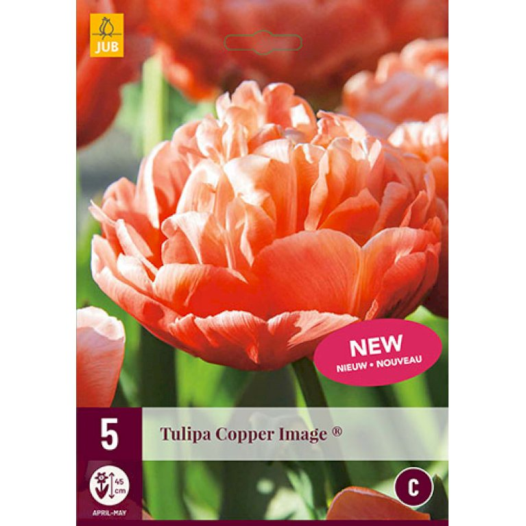 Tulips Copper Image ®