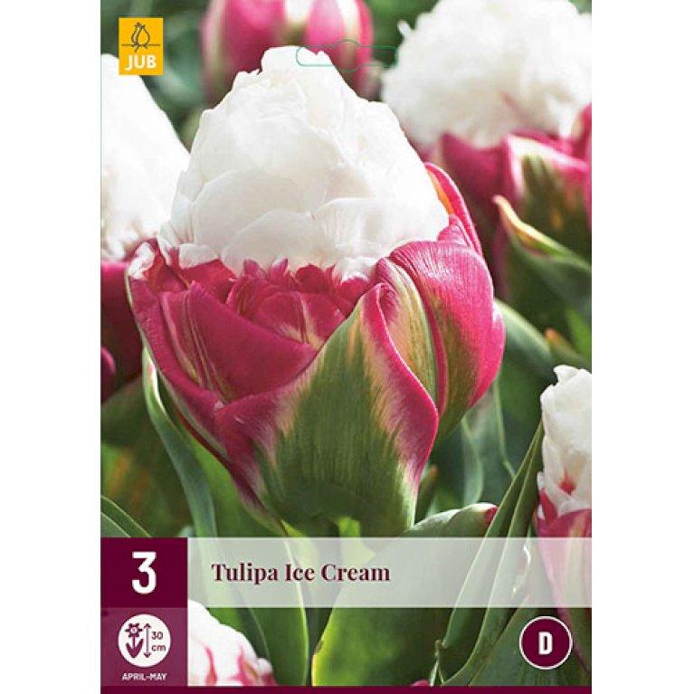 Tulips Ice Cream