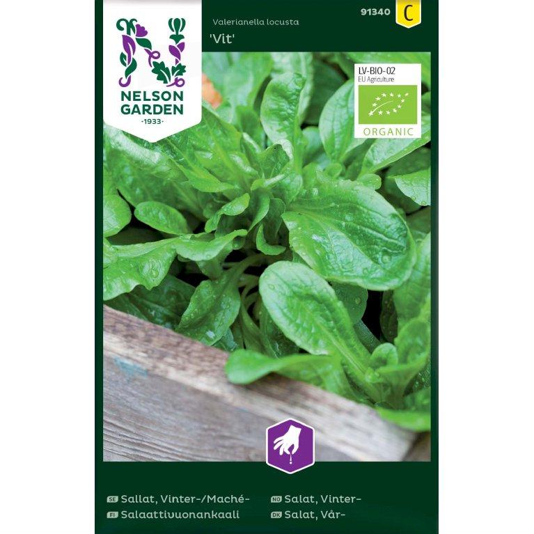 Salat, Vår-, Tandfri, Vit, Organic