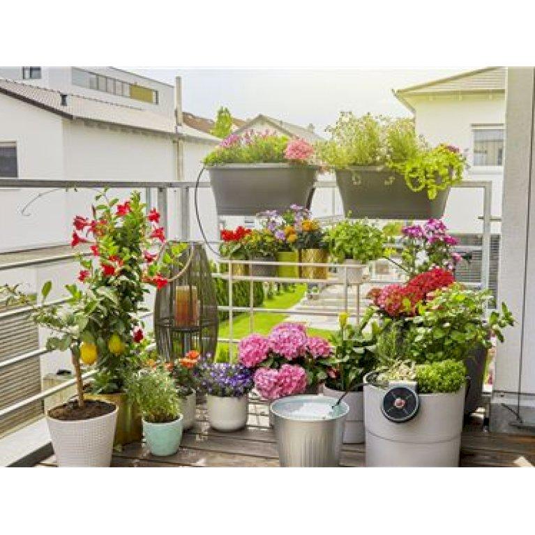 Gardena AquaBloom solcelledrevet vandingssæt