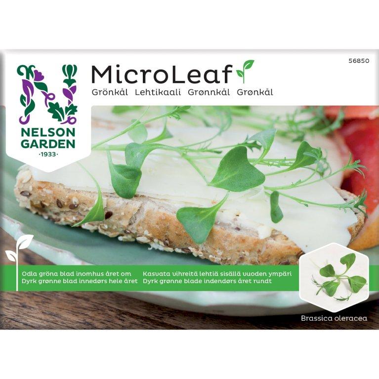 Grønkål, Micro Leaf