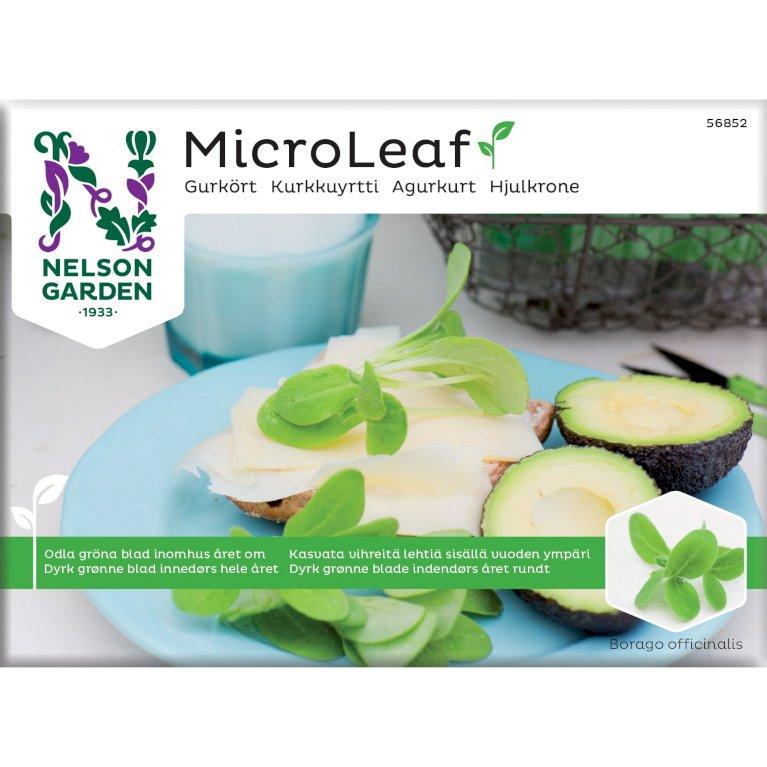 Hjulkrone, Micro Leaf