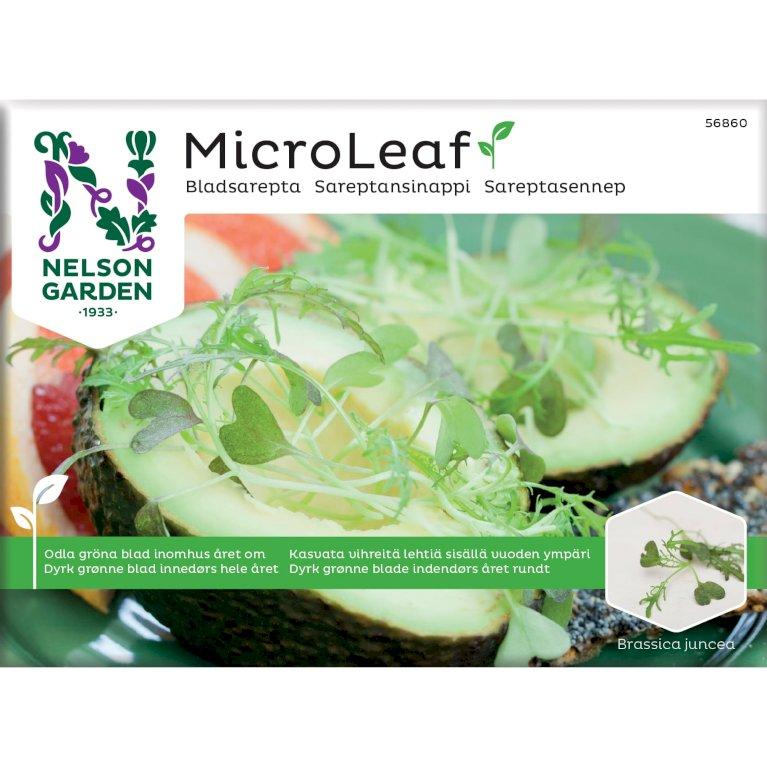 Sareptasennep, Micro Leaf