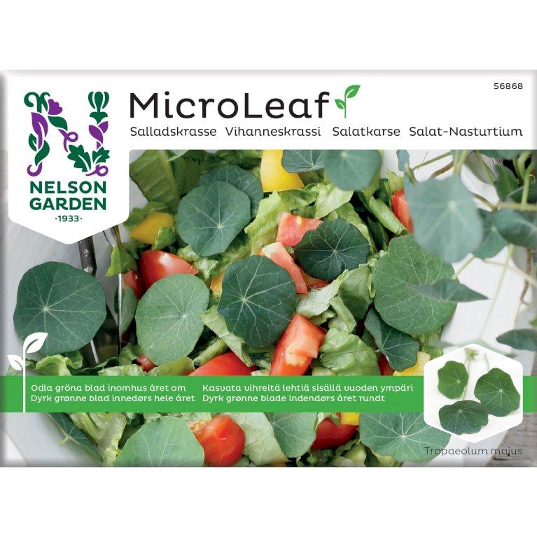 Salat-Nasturtium, Micro Leaf