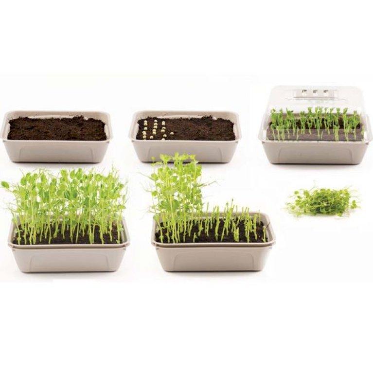 Micro Leaf 3-boks