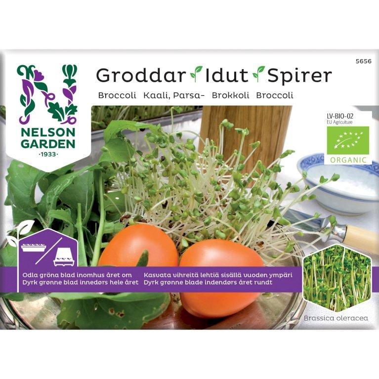 Broccoli, Spirer, Organic