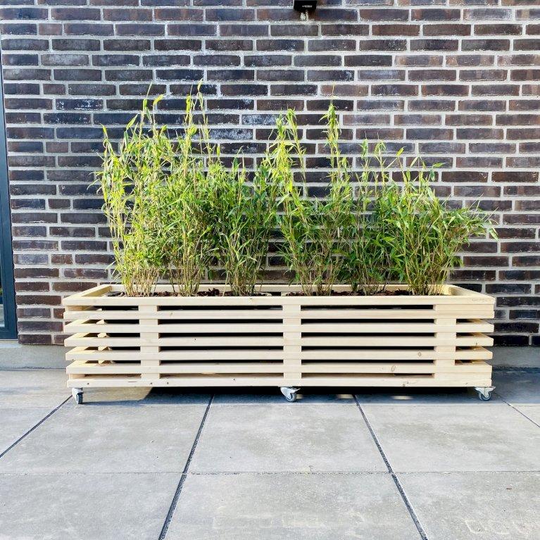 Plantekasse af nye traller