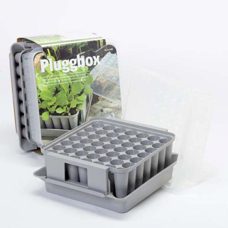 Plugbox med plads til 49 planter