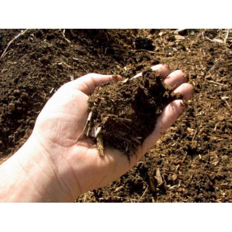 Plantemuld m. kompost  fra Champost