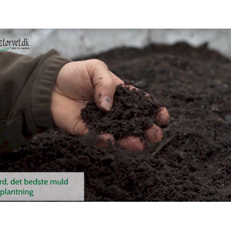Hækjord til plantning af hæk