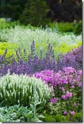 Edwards Gardens - Morning flower mix - Toronto, Ontario (June 19th, 2008)