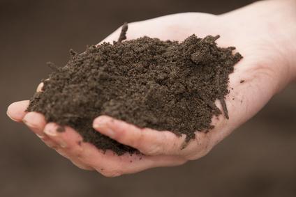 Kompost og konstruktiv jordforbedring