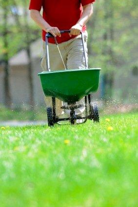 Kalkning gavner planter og jord på flere måder
