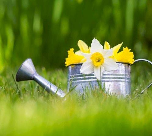 Påsketid er havetid: Det skal du lave i haven i begyndelsen af april