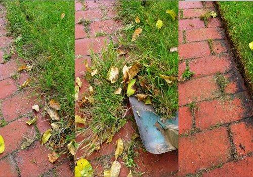 Skær kanterne på græsset nu!