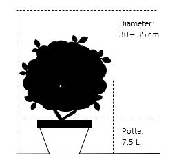 Potte 7,5 liter 30-35 cm. diameter