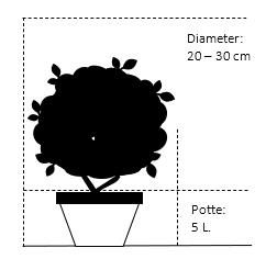 Potte 5,0 liter,- 25-30 cm. Diameter.