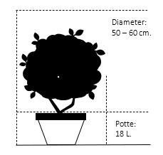 Potte 18 liter,- 50-60 cm. Diameter