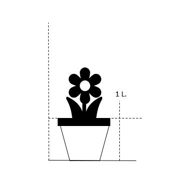 1 liter potte med blomst