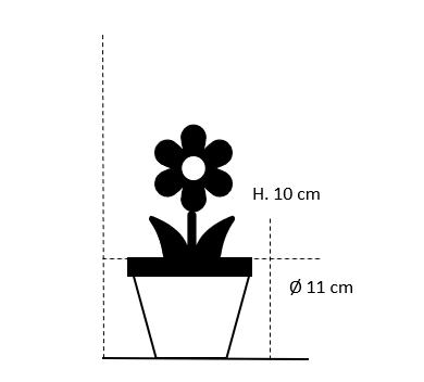 11 cm. potte med blomster