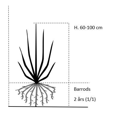 Barrods,- 2 års (1/1) 60-100 cm.