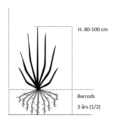 Barrods,- 3 års (1/2) 80-100 cm.