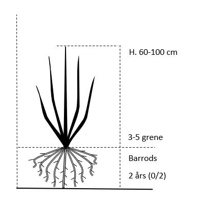 Barrods,- 2 års (0/2) 60-100 cm.