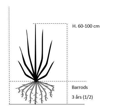 Barrods,- 3 års (1/2) 60-100 cm.
