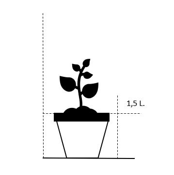1,5 liter potte