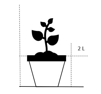 2 Liter potte