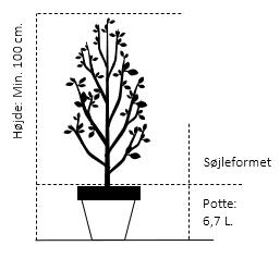 Potte 6,7 liter, Søjle minimum 100 cm.